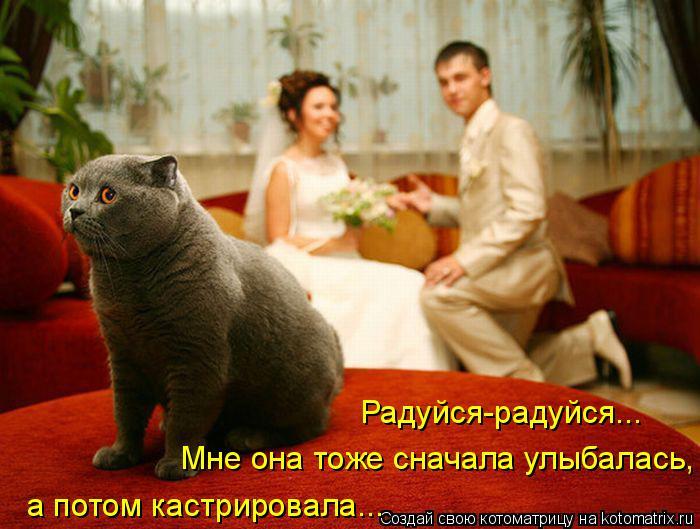Котоматриця!)))) 677597