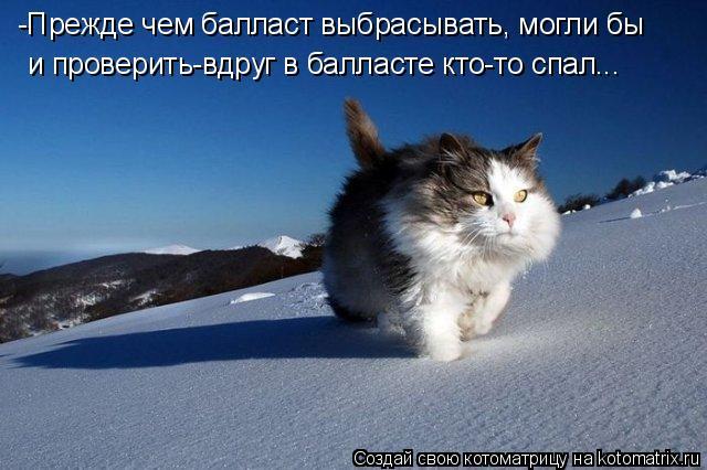 Котоматриця!)))) - Страница 6 796141