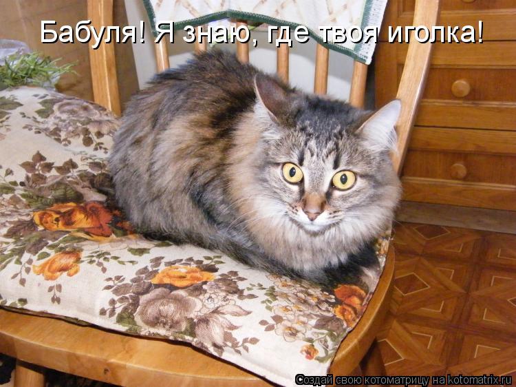 Котоматриця!)))) - Страница 6 821857