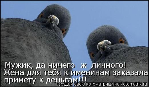 Котоматриця!)))) 854095