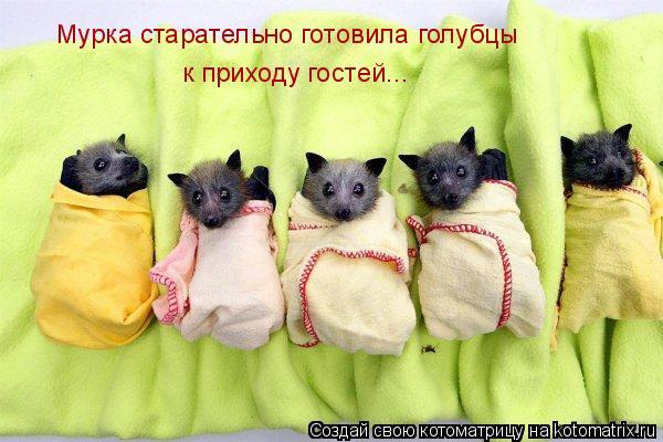 Котоматриця!)))) 862830