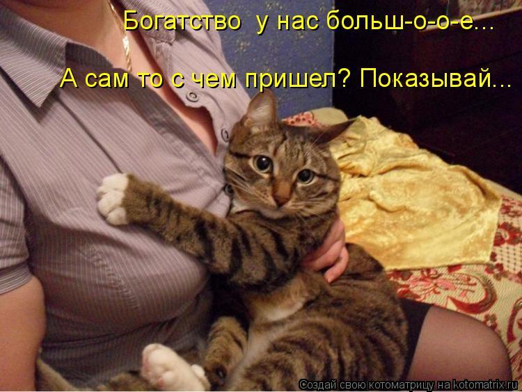 Котоматриця!)))) - Страница 6 911127