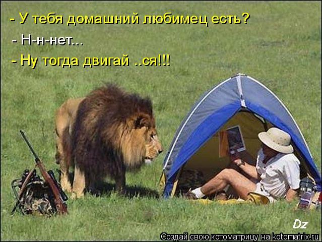 Котоматриця!)))) - Страница 6 935670