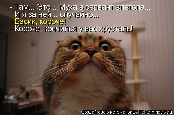Котоматриця!)))) - Страница 6 936886