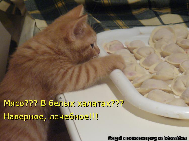Котоматриця!)))) - Страница 6 940121