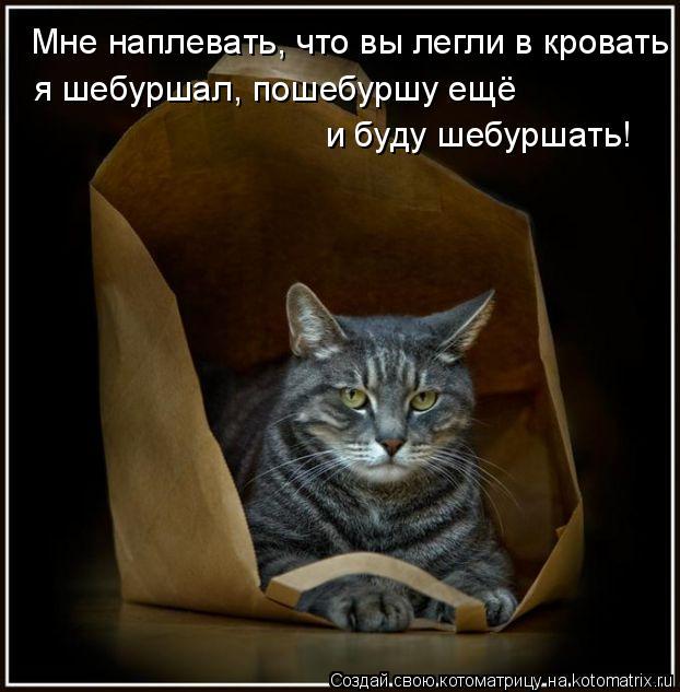 Котоматриця!)))) - Страница 6 940501