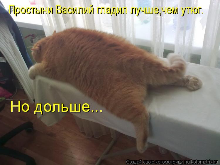 Котоматриця!)))) - Страница 6 943493