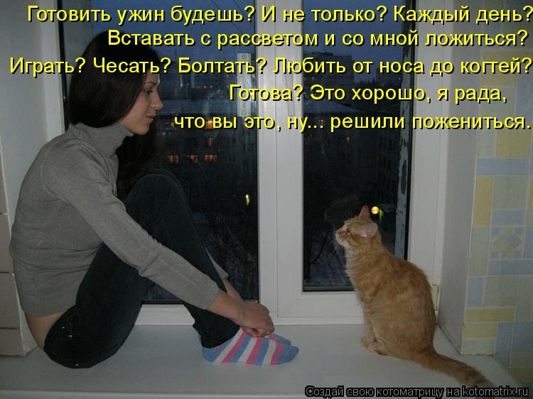Котоматриця!)))) - Страница 6 944001