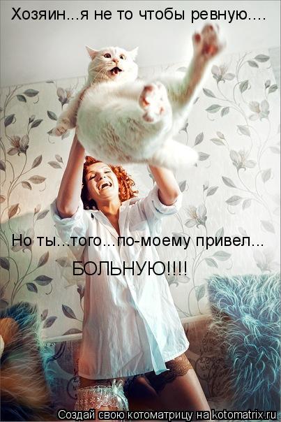 Котоматриця!)))) - Страница 6 945559