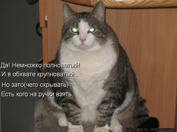 Котоматриця!)))) - Страница 9 1022225