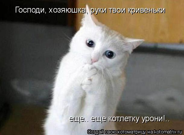 Котоматриця!)))) - Страница 9 1033203