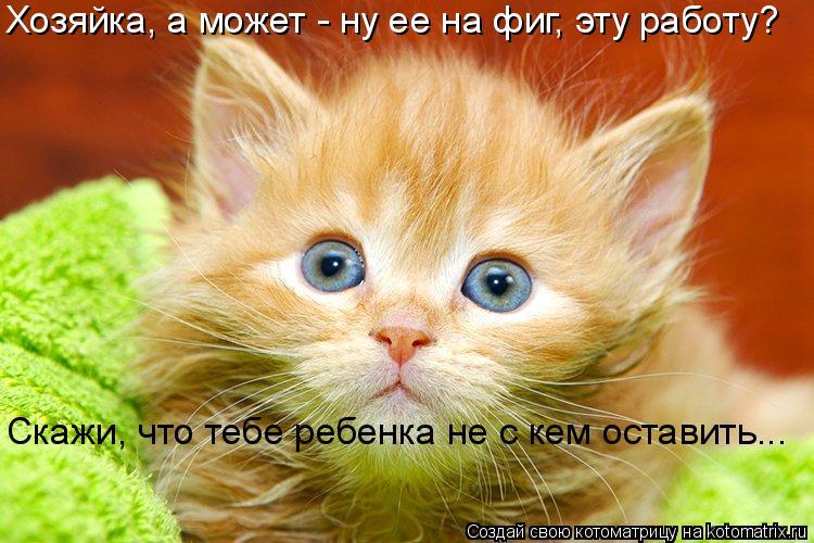 Котоматриця!)))) - Страница 9 1045808
