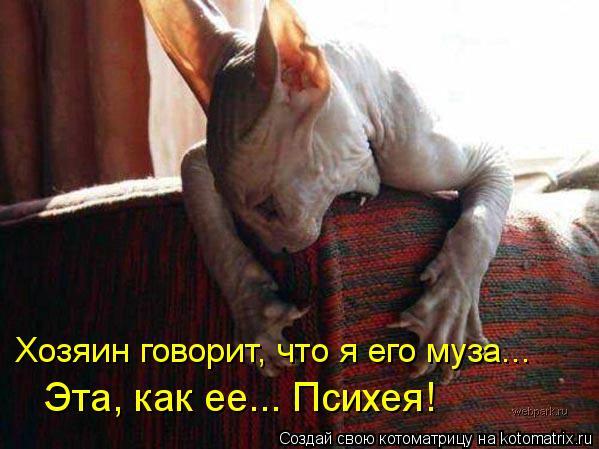 Котоматриця!)))) - Страница 10 1130706