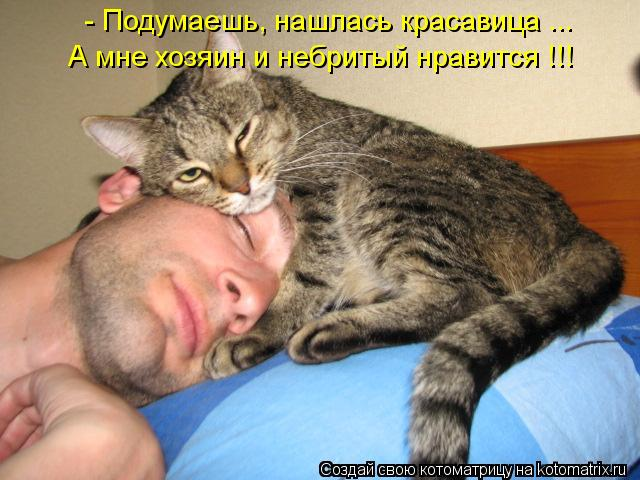 Котоматриця!)))) - Страница 10 1131707