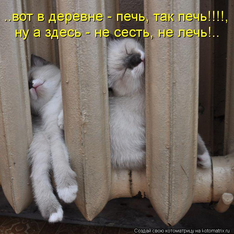 Котоматриця!)))) - Страница 10 1134203