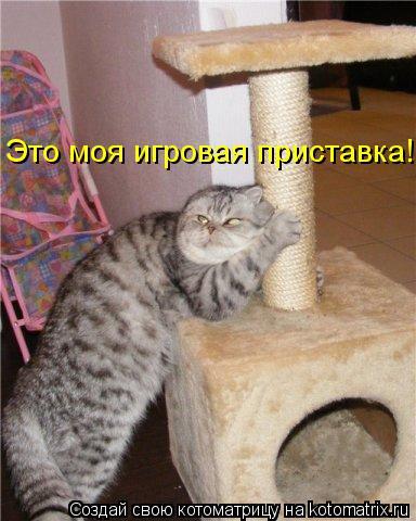 Котоматриця!)))) - Страница 10 1137499