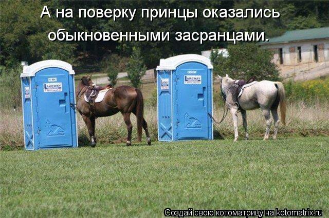 Котоматриця!)))) - Страница 10 1156544