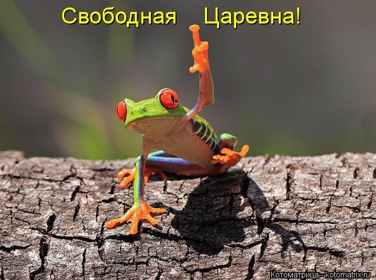 Котоматриця!)))) - Страница 10 Kotomatritsa_LD