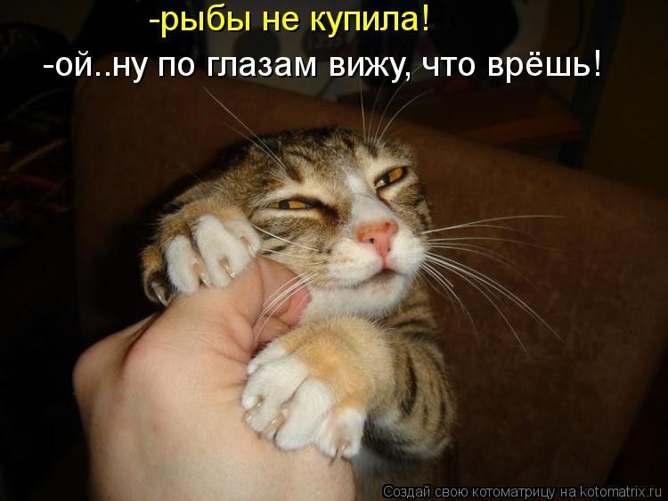 Котоматриця!)))) - Страница 10 Kotomatritsa_4P