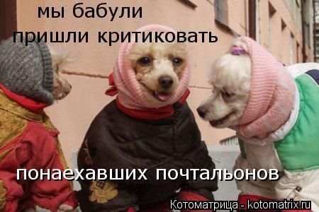 Забавные животные и птицы. - Страница 5 Kotomatritsa_3I