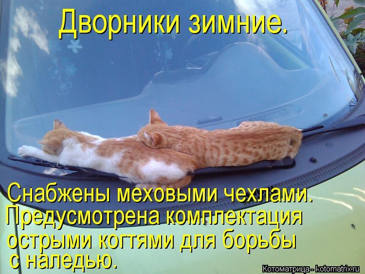 Котоматриця!)))) - Страница 10 Kotomatritsa_mj