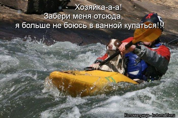 Котоматриця!)))) - Страница 10 Kotomatritsa_D5