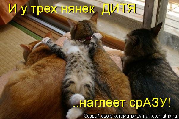 Котоматриця!)))) - Страница 10 Kotomatritsa_NV