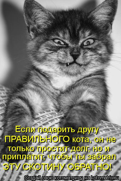 Котоматриця!)))) - Страница 10 Kotomatritsa_bz