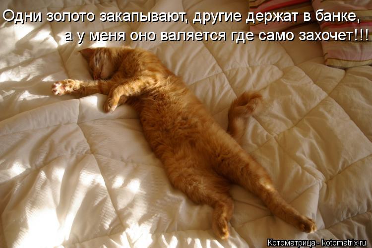 Котоматриця!)))) - Страница 10 Kotomatritsa_6