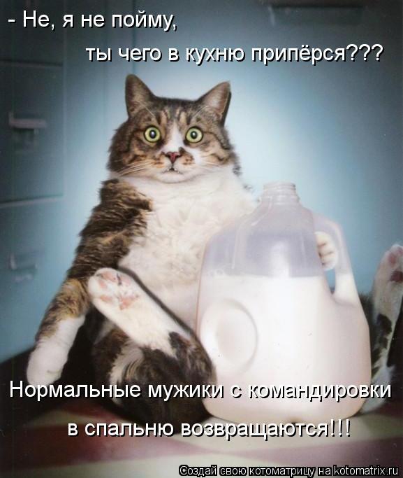 Котоматриця!)))) - Страница 10 Kotomatritsa_Ca