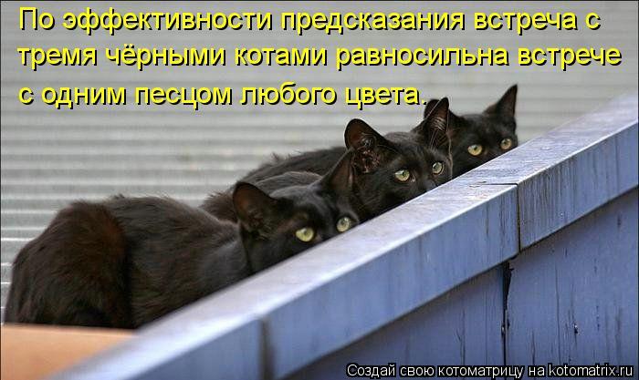 Котоматрица Kotomatritsa_b3