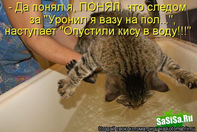 Котоматрица Kotomatritsa_U