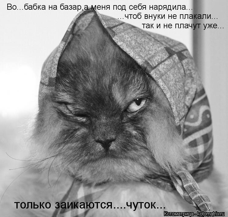 Котоматрица Kotomatritsa_Fc