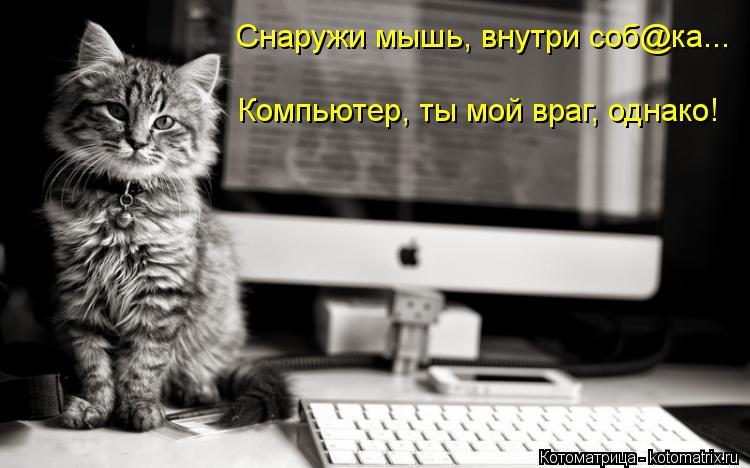 Котоматрица Kotomatritsa_AZ