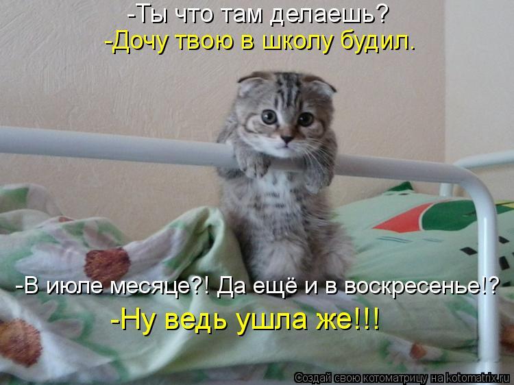 Котоматрица - 3 - Страница 38 Kotomatritsa_Mv
