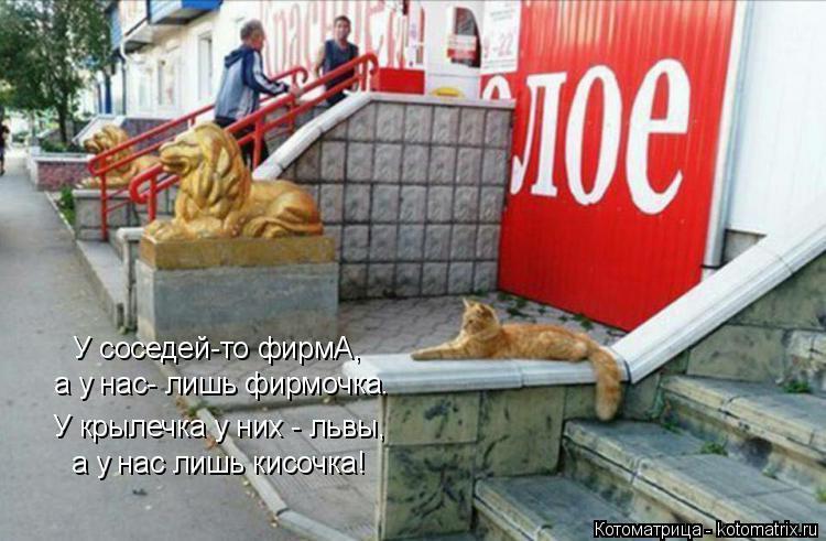 Котоматрица - 3 - Страница 38 Kotomatritsa_J