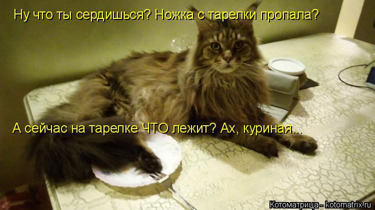 Котоматрица -2  - Страница 5 Kotomatritsa_oq