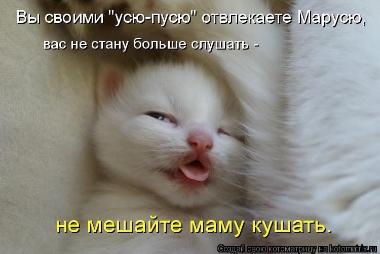 Котоматрица -2  - Страница 5 Kotomatritsa_d