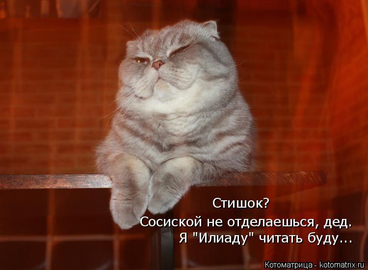 Котоматрица -2  - Страница 5 Kotomatritsa_o