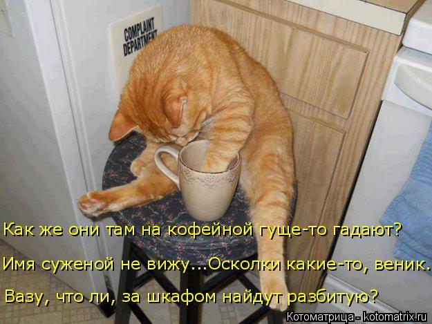 Котоматрица  - Страница 21 Kotomatritsa_9G