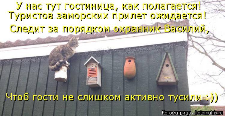 Котоматрица - 4 - Страница 26 Kotomatritsa_m