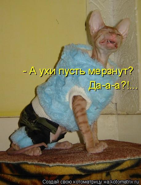 Котоматрица -2  - Страница 5 Kotomatritsa_YL