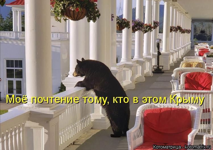 Котоматрица - 4 - Страница 6 Kotomatritsa_dD
