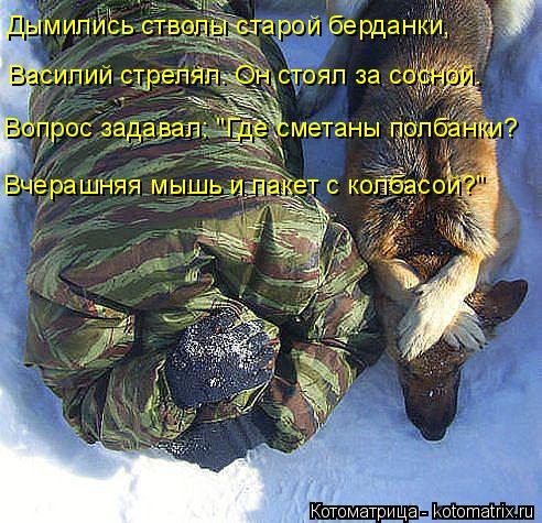Котоматрица - 4 - Страница 10 Kotomatritsa_yg