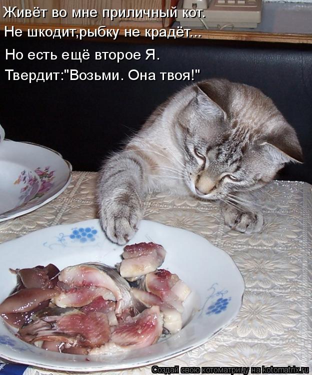 Котоматрица - 4 - Страница 10 Kotomatritsa_t