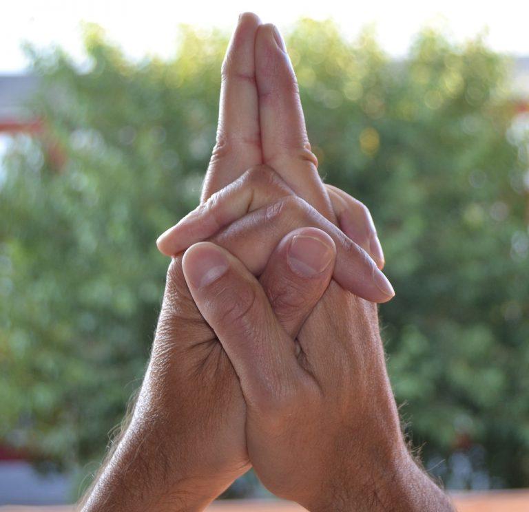 Мудры - йога для пальцев. фото с описанием Matangi-768x744