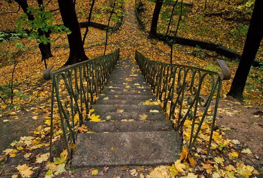 Экскурсии по Киеву. Парк «Дача Хрущёва» 4fb3837e7095dd71a3905b4ccd0cb267