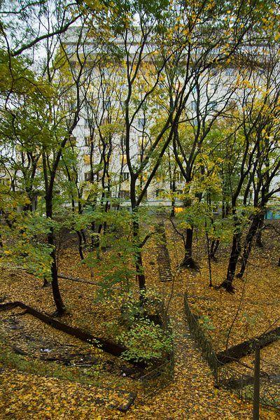 Экскурсии по Киеву. Парк «Дача Хрущёва» Feb73e8958b87778bb7993f878440571