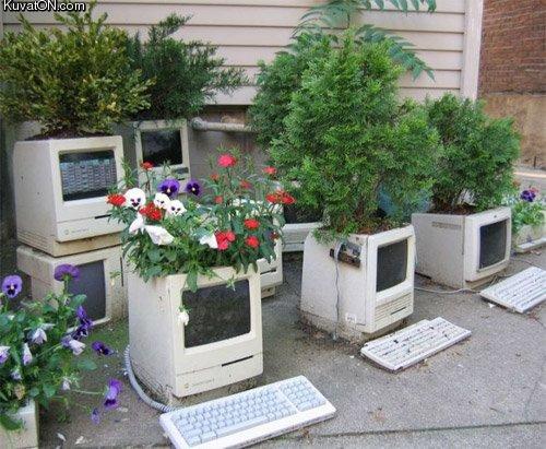 L'univers des Geeks Nerd_garden