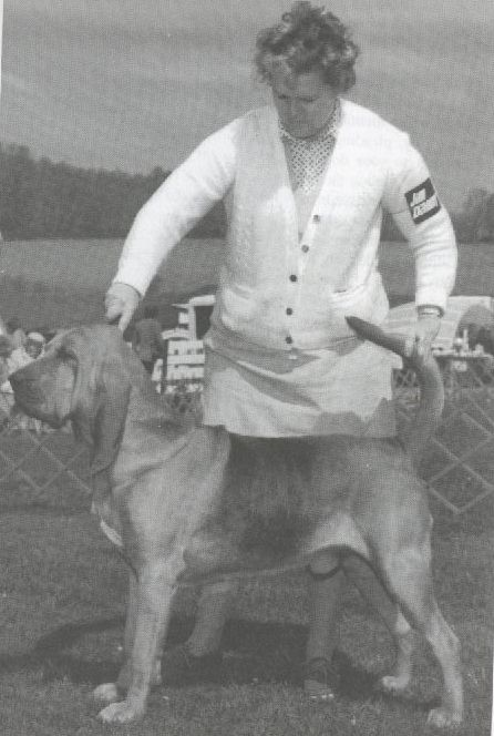 THE WINNING EDGE: SHOW RING SECRETS by George G. Alston with Connie Vanacore. 472c3b321ca1